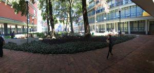 Jardín de los Eméritos. Foto de archivo DXMX